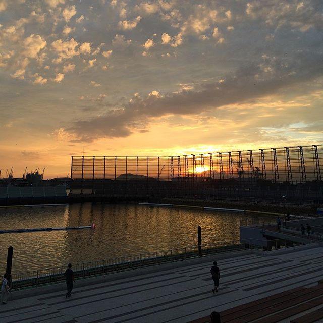 丸亀競艇場の夕日がこんなに綺麗なんて、ギャンブラーのみなさん知っていましたか。予想紙から目線を上げて空を見上げるのもたまには大事だよ、そんな絶景がそこにはあった。夕日は毎日絶景。これ、人生のエッセンスだべ。