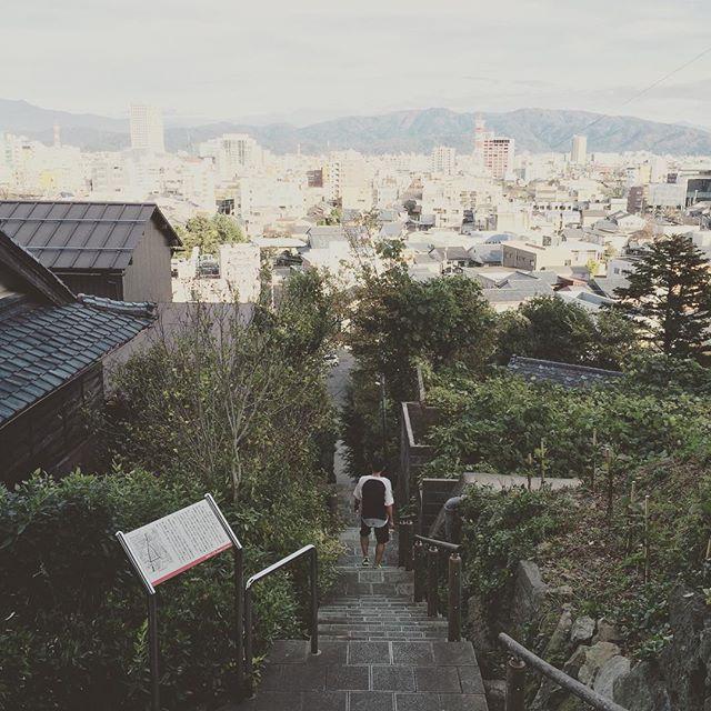 晴れてる!じゃあ歩いて紅葉しよう。足羽神社まで妊婦が登った。振り返って、こんな階段が急だったんだ!って。