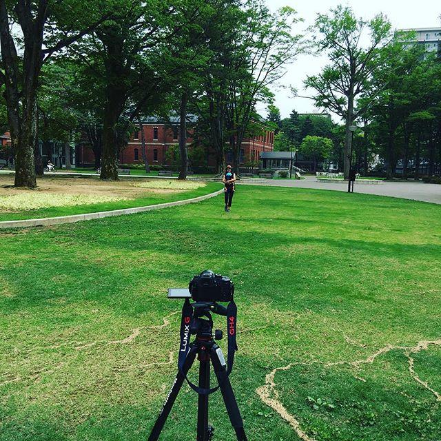 僕らが集めているのはカメラに向かってひたすら歩くっていうフッテージです。平日は人がいないので敢えて平日の昼時を狙って外出するのです。